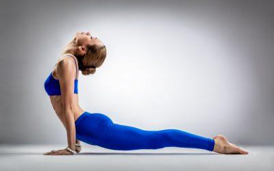 Йогатерапия. Индивидуальный курс